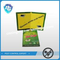 Paperboard Mouse Glue Trap Supplier Rat Glue Pad Manufacturer Factory
