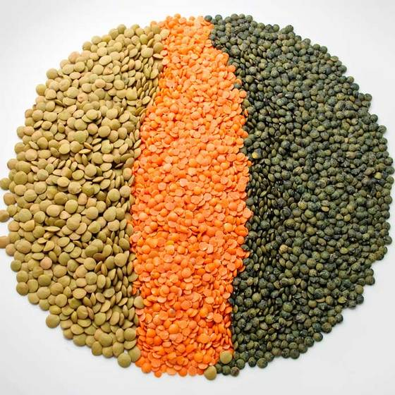 Sell Green lentils HPS quality dry green import red lentils