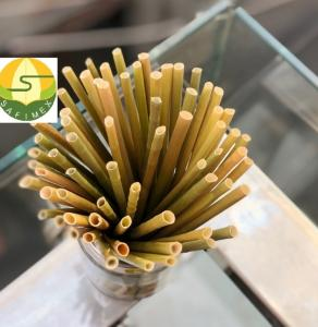 Wholesale eco-friendly: Grass Drinking Straw/Eco-friendly Products
