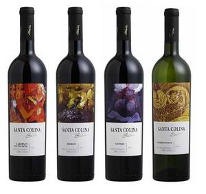 Wholesale white red wine: Alianca Red and White Fine Wines