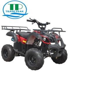 Wholesale atv: ATV 125CC-1 Different New Style Safety Motorbike for Sale