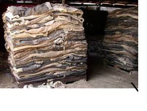 Wholesale do: We Do Sell High Quality Hides,We Sell Cow Hides,Buffalo Hides,Donkey Hides/Sheep/G