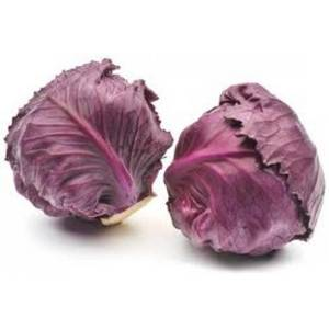Wholesale canned strawberry: Fresh Red Cabbage