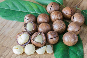 Wholesale Macadamia Nuts: Best Quality Raw Macadamia Nuts in Shell