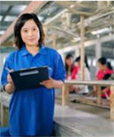 Sell Factory Audit (Technical Quality Assessment)