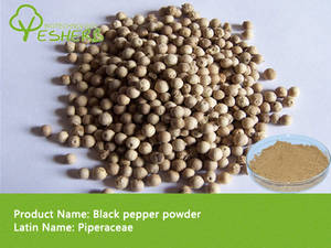 Wholesale animals sexs: Organic Black Pepper Powder