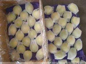 Wholesale Pears: Fresh Ya Pear