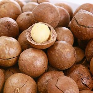 Wholesale plastic box/package/pack: Top Quality Macadamia Nuts COMPETITIVE PRICE
