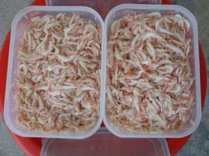 Wholesale Shrimp: Baby Shrimp Whole Sale Price