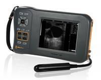 Digital Veterinary Ultrasound Scanner CE Mark for Bovine Equine and Swine