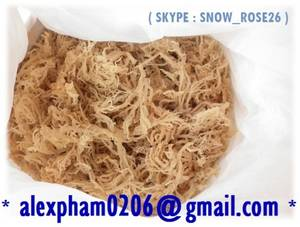 Wholesale eucheuma cottonii: Dried Eucheuma Cottonii Seaweed for Carrageenan, for Food / Kappaphycus Alvarezii