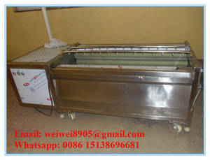 Wholesale Food Processing Machinery: Stainless Steel Carrot Washer and Peeler Machine