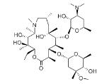 Wholesale peptide synthesis: Azithromycin