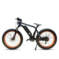 Low Price Fat Tire Electric Bicycle