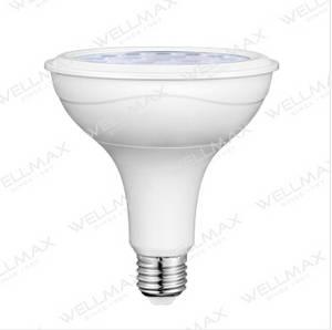 Wholesale led par lamp: WELLMAX LED Par Lamp - PAR30/PAR38
