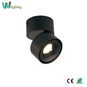 Wholesale led ceiling down light: 12w Ceiling Lights LED-Downlight Directional for Kitchen