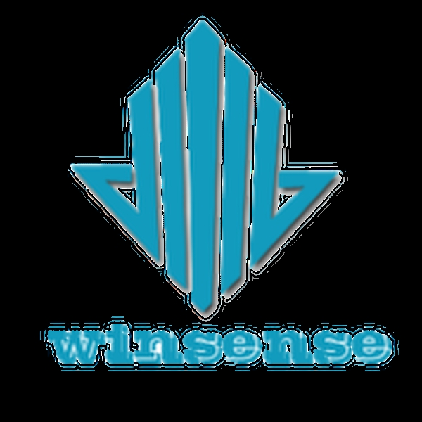 Shandong Winsense Construction Machinery Equipment Co.,Ltd