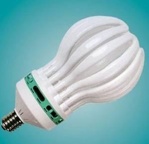 Wholesale cfl: CFL Lamp  Loutus Shape