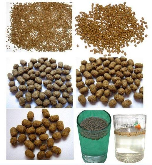 Hot Sale Floating Fish Feed PET Food Making Machine and Production Line