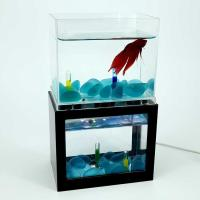 Mini Fashionable Acrylic Fish Tank/Aquarium 2