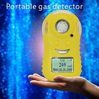 Wholesale gas alarm: 12 Portable Gas Alarming Detector