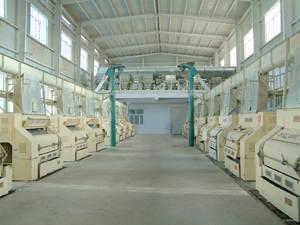Wholesale Cotton Seeds: Cottonseed Delinting Equipment
