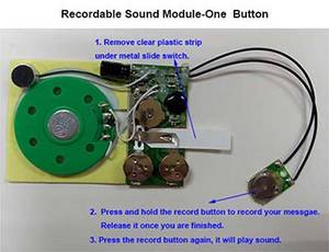 Customized Programmable Random Sound Module