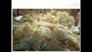Wholesale colophony: Sell Gum Rosin