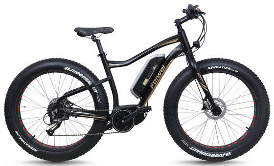 electric bike: Sell Electric Bike Mountain Fat Tyre (TDB10Z-3)