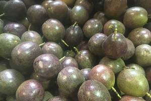 Wholesale fruit: Fresh Passion Fruit