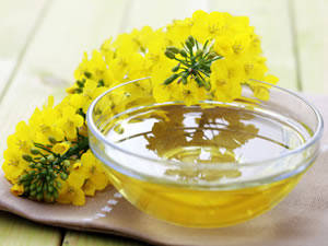 Wholesale generous appearance: Quality Refined Rapeseed/Canola Oil