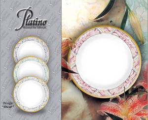 Wholesale serving tray: Tableware (Platino-Oscar)