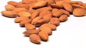 Wholesale almond: Almonds