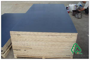 Wholesale balck board: Black Film Faced Plywood